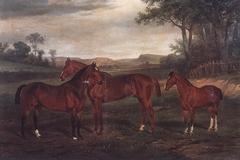Sam, Bowler and Farmer 1860