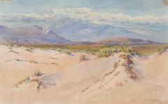 Sand Dunes, Harlech, North Wales
