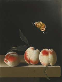 Still life with three peaches on a stone ledge and a butterfly