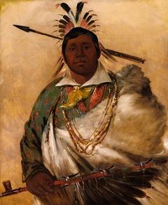 Téh-ke-néh-kee, Black Coat, a Chief