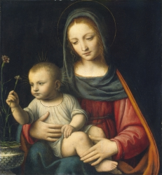 The Madonna of the Carnation