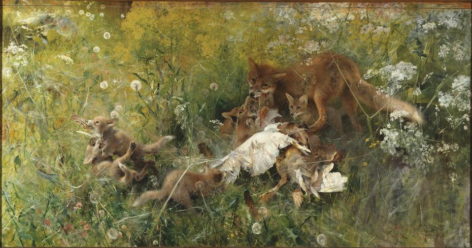 A Fox Family