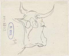 Koeienkop