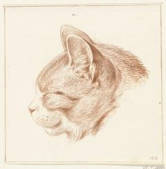 Kop van een kat, naar links
