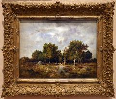 La forêt de Fontainebleau en Automne