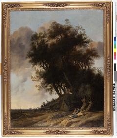 Landscape near Alkmaar