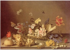 Still Life with Shells and Flowers