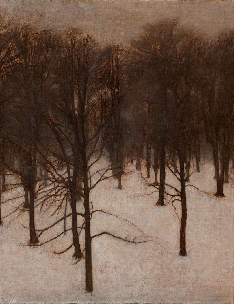 Søndermarken ved vintertid